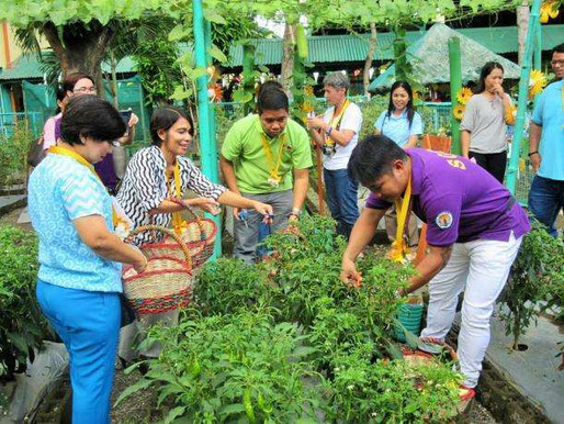 A Celebration of Bountiful Harvests in Sta. Rosa City Cluster