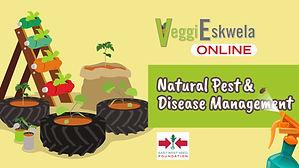 VeggiEskwela-06.00_00_02_21.Still033.jpg