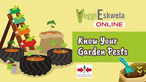 VeggiEskwela-10.00_00_02_20.Still099.jpg