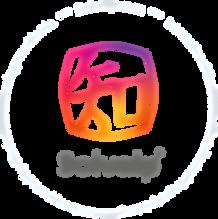 Logo Solvaip 2020 - Vertical.png