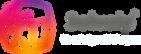 Logo Solvaip 2020 - Horizontal.png