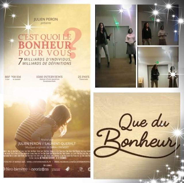 Projection film de Julien Peron, 01/12/18 à Leyment