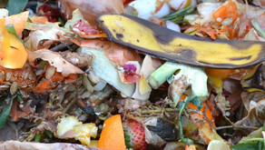 Easy Ways to Compost (& Vermicompost) in Small Spaces
