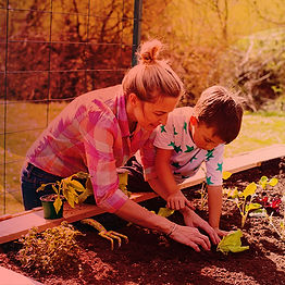 10 gardening projects for kids