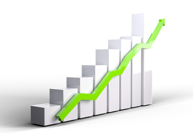 growth-3078543_960_720.png