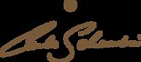 carlo schembri logo in gold_300x.png