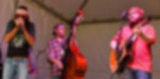 Delta Junction, Blues, Band, Va, Virginia, Crozet, Delta, Junction
