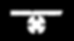 ECHO-Effect_Logo_v004_Light.png