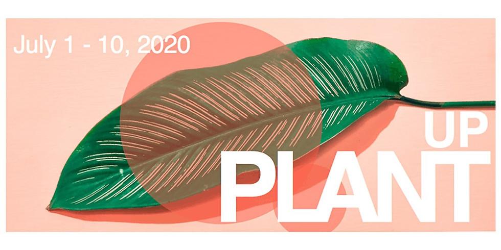 PLANT BASED SKINCARE WORKSHOP PlantUP Edition!