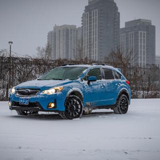 Snowy day-1.jpg