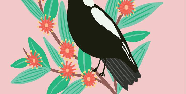 Card - Magpie - Blank
