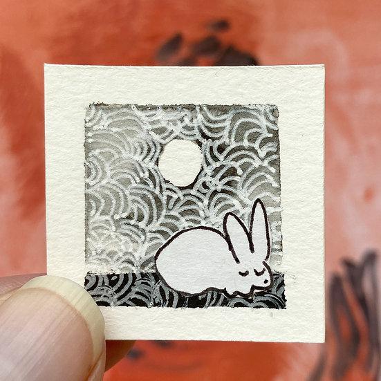 'A rabbit's dream' 1809