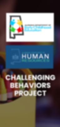 Challenging Behaviors.png