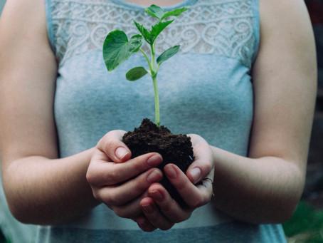 Mehr Nachhaltigkeit im Alltag