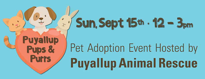 9.15.19 pet adoption wix banner.png