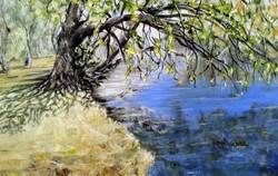 Murray River, Albury NSW