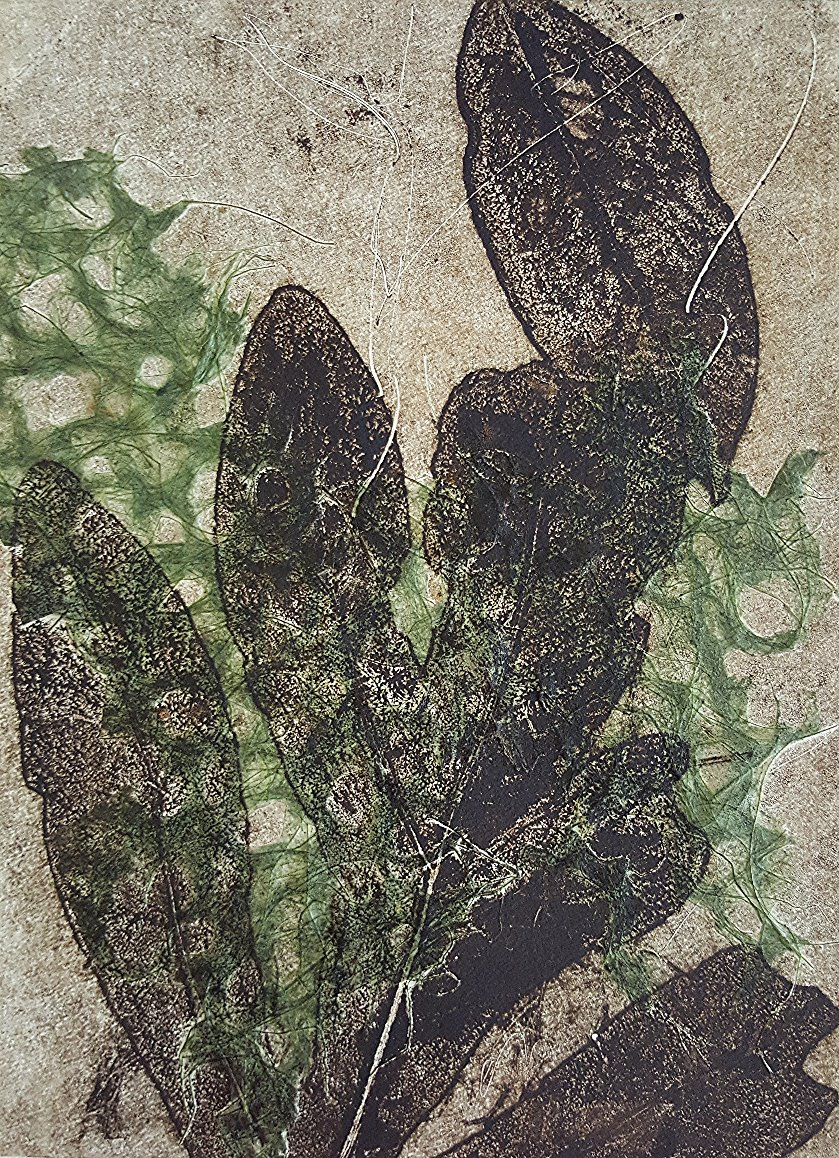 Shadow print of Green Leaf