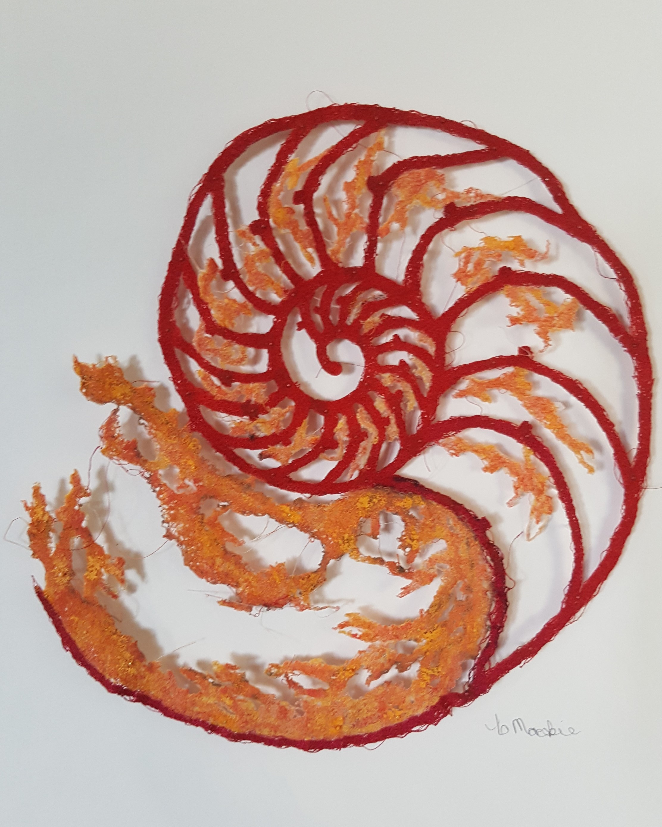 Red Nautilus - view 3
