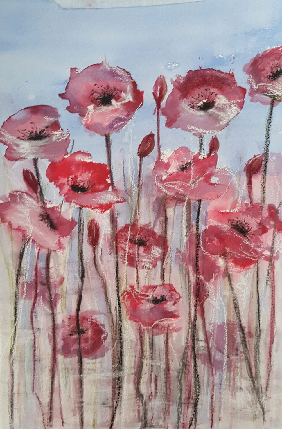 Poppies in ink
