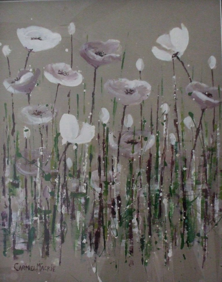 White field of poppies