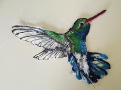 Hummingbird - drawing with thread fr