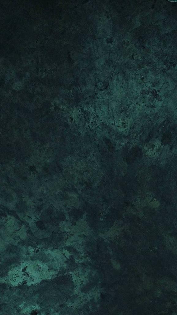 Dark Green Printed Old Master White Litt