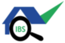 Logo_ibs.jpg