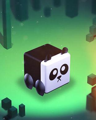 panda for website.jpg