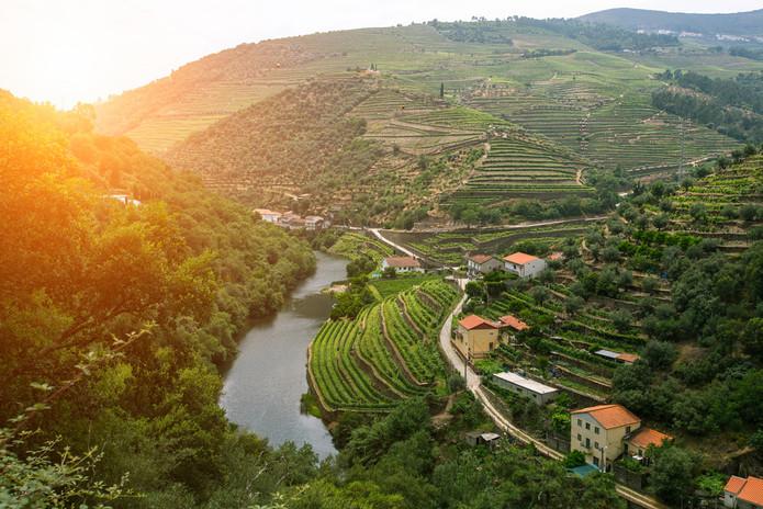 Douro Valley 1.jpg