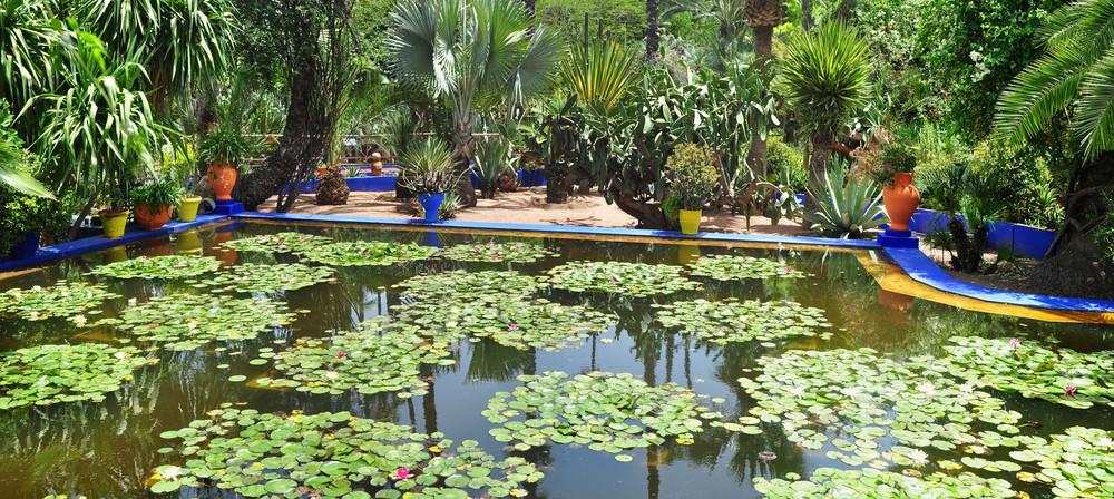 Majorelle Gardens.jpg