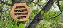 Native pollenator home