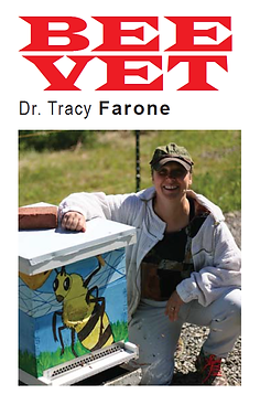 Bee vet picture.png