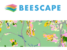 Beescape pic.png