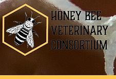 Honey bee vet con.png