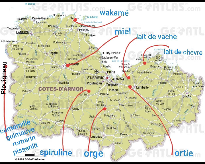 la-ptite-bulle-bretonne (3)