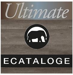 Ultimate_Webicone.jpg
