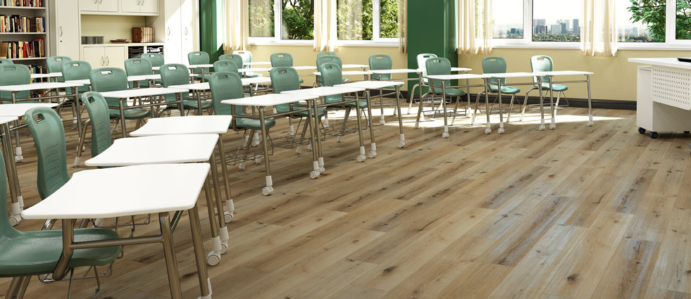 Classroom_Chesnut_Oak_web.jpg