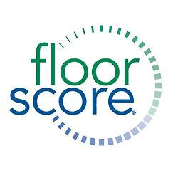 Floor-Score.jpg