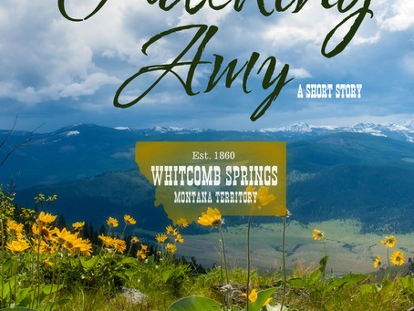 "Whitcomb Springs – ""Tracking Amy"""