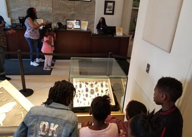 Audubon Insectarium trip Spr 2019