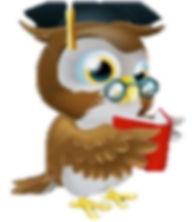 CLASS.Owl_edited.jpg