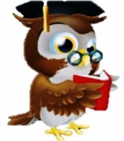 CLASS Owl mascot