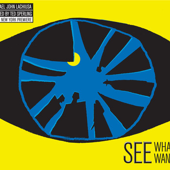 "The Public Theater ""See What You Wanna See"""