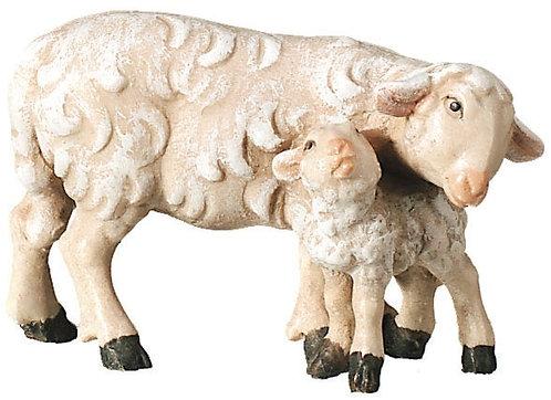 Schaf mit Lamm,