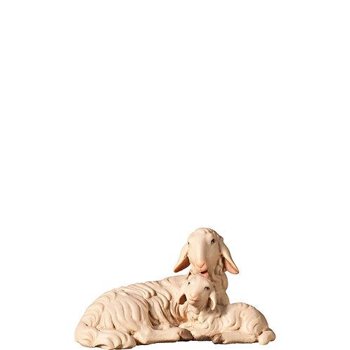 Schaf und Lamm liegend, / Schaf mit Lamm auf dem Rücken