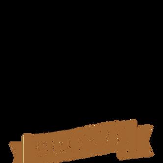 Bronze TPM IA 2020 - blk.png