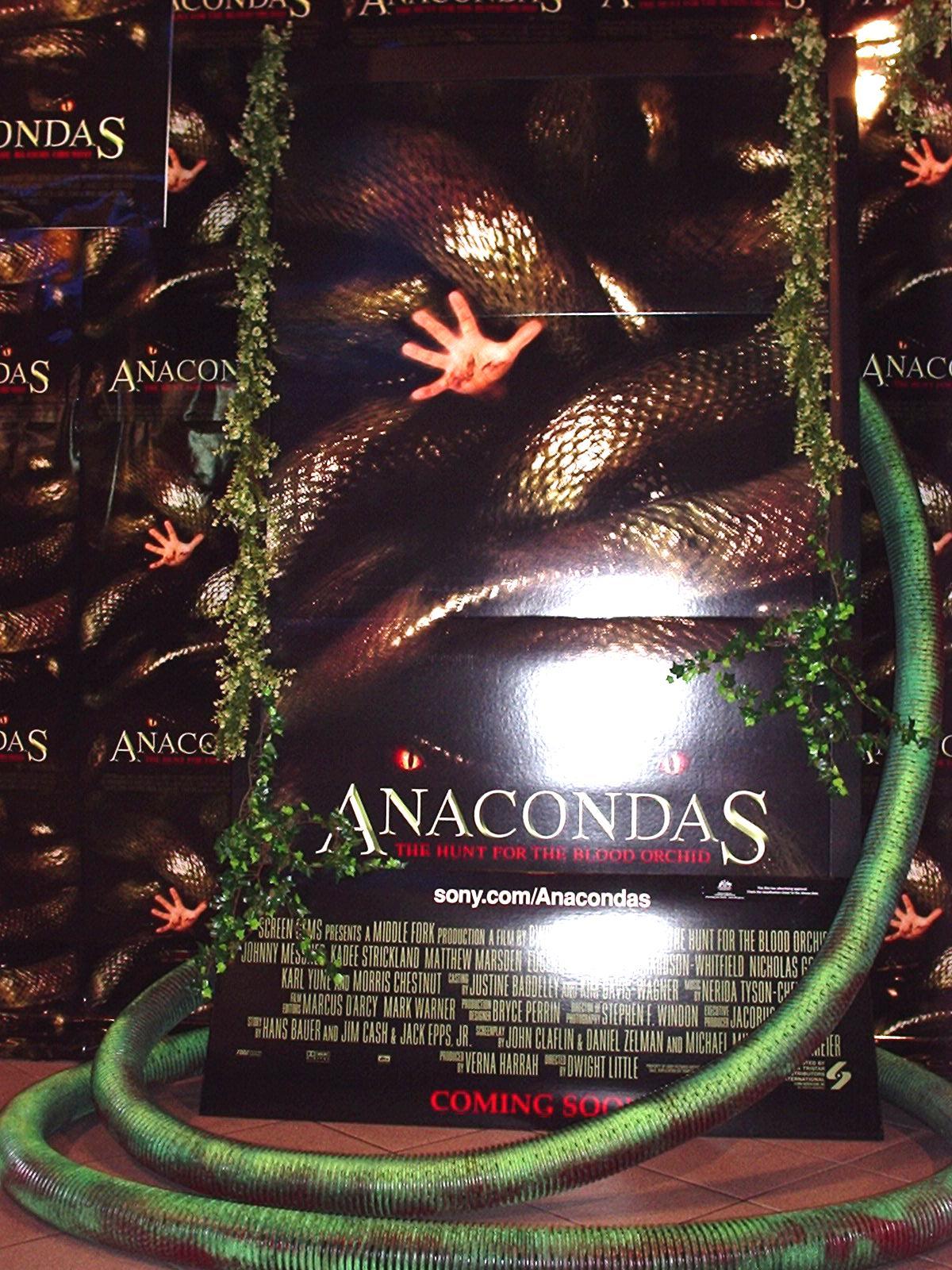 Anacondas GU Morley 2