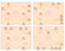 jyotish-chart.jpg