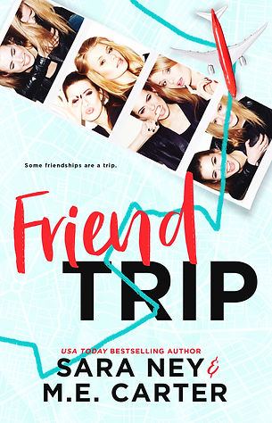 SNFriendTripBookCover55x85_HIGH.jpg