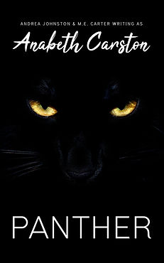 PANTHER_Kindle Book Cover.jpg